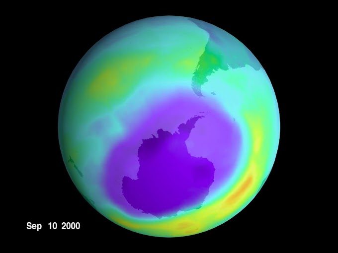 Write a critical note on thinning of Ozone layer and its prevention.