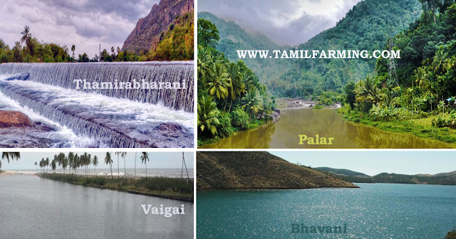 தமிழக ஆறுகளின் நிலைமை, tamil nadu rivers, kaveri, vaigai, palar, thamirabharani, rivers @tamilfarming
