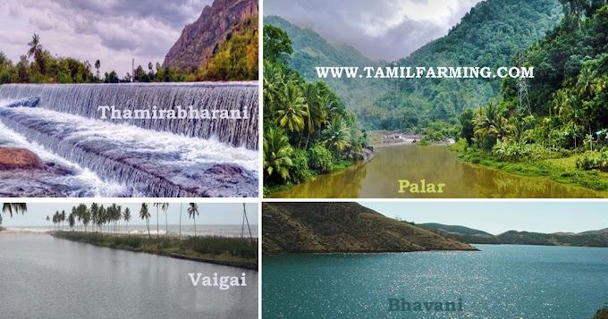 தமிழக ஆறுகளின் நிலைமை | Condition of Tamil Nadu Rivers