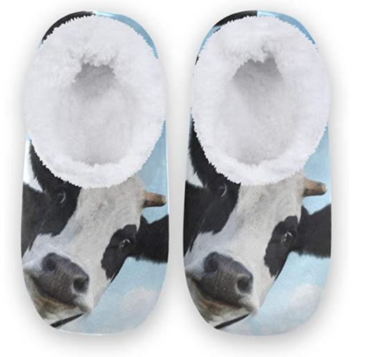 zapatillas - casa - foto - vacas - vacaslecheras.net