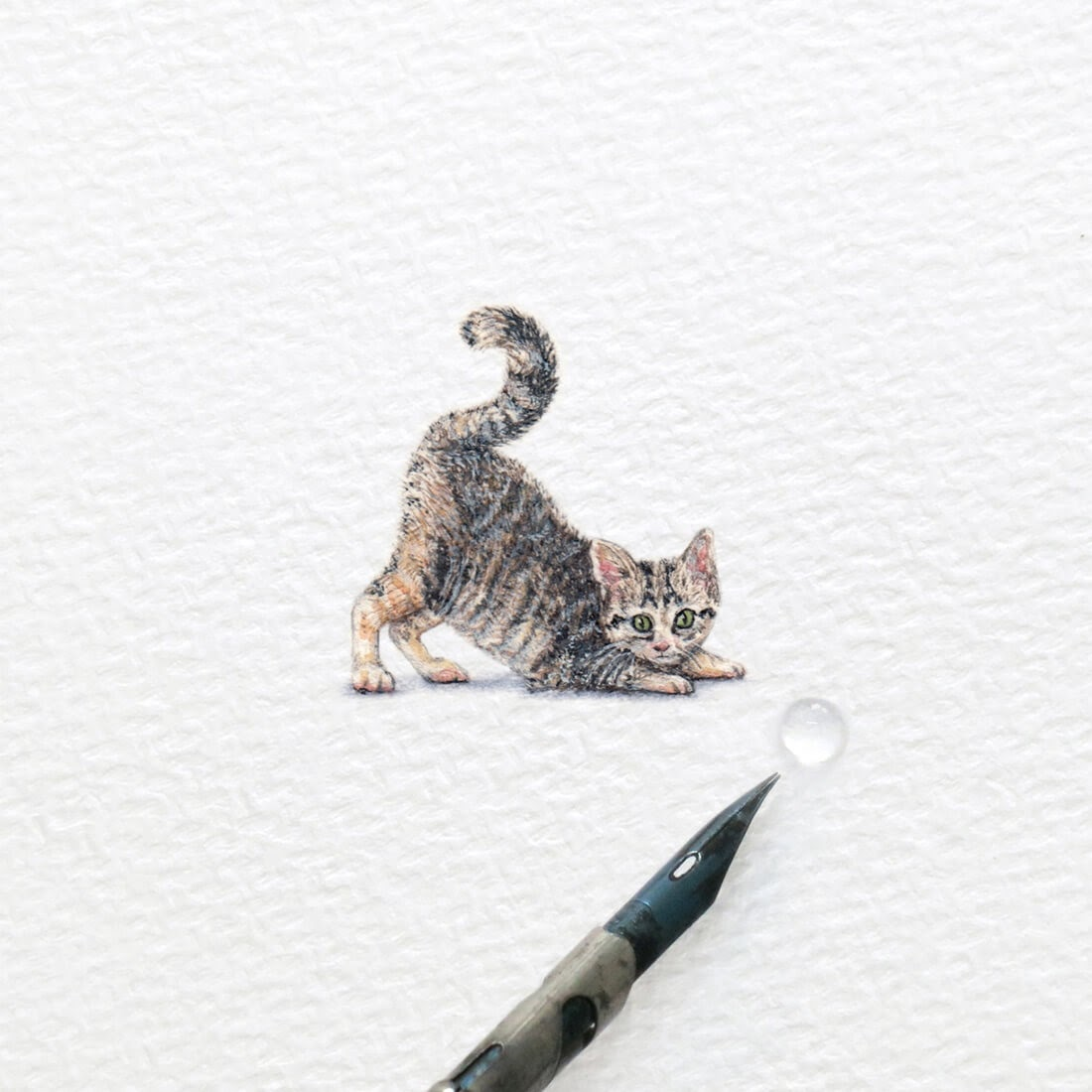 13-Kitten-Stretching-Frank Holzenburg Miniature Drawings and Paintings of Animals-www-designstack-co