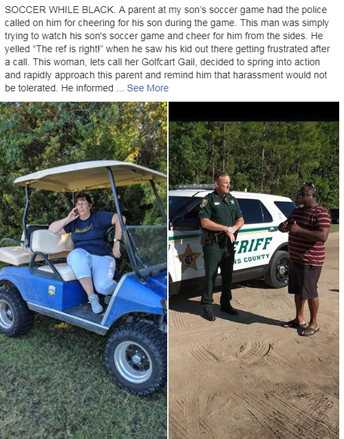 Image result for golf cart gail