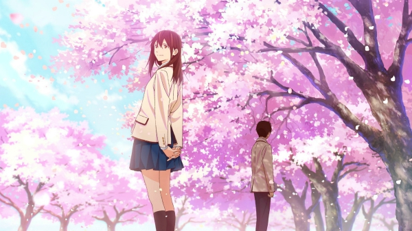 Vivid visuals of I Want to Eat your Pancreas