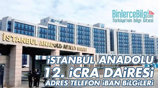 İstanbul Anadolu 12. İcra Dairesi Adresi, Telefonu, İBAN Numarası
