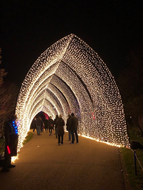 Guests amble through a tunnel of gold at Lightscape.