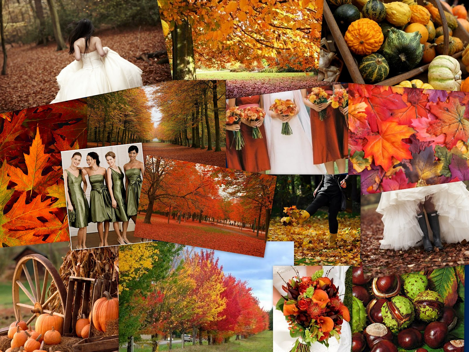 Wallpaper Images Of Fall Trees Lined Lake Autumn Inspiration Wedding Planner Bournemouth Dorset