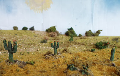 MAW99 Cacti picture 4