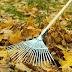 La Ciudad refuerza la limpieza urbana en el otoño