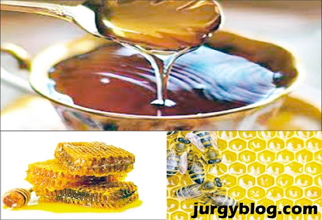 How to make money in Nigeria selling Honey