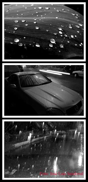 Lluvia en blanco y negro / Fotos: José Luis Sandoval