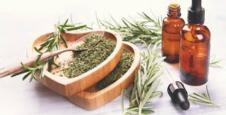 oil for hair growth and hair fall is Rosemary oil