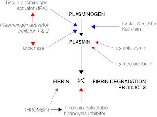 mekanisme-kerja-alteplase-sebagai-fibrinolisis