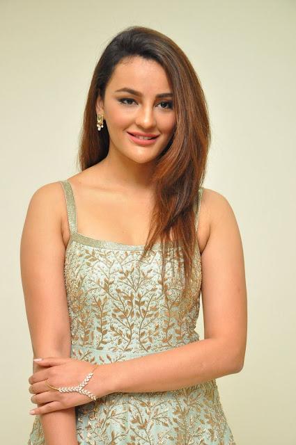 Actress Seerat Kapoor Stills at Okka Kshanam Trailer Launch