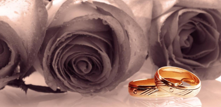 Android Hd Wallpapers Wedding Rings Hd Wallpapers