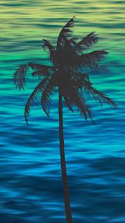 Palm Trees Mobile HD Wallpaper