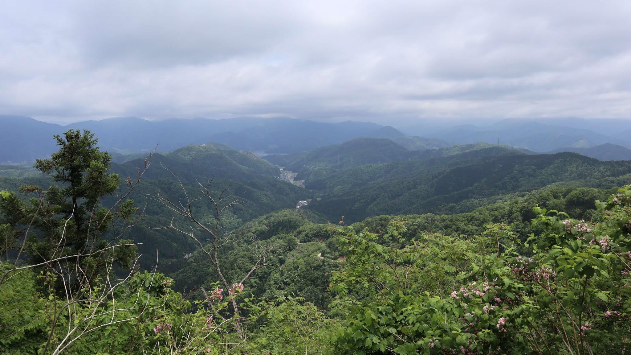 ホノケ山13