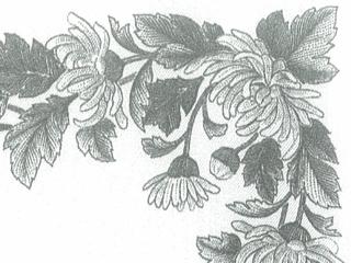 細部まできっちり印刷された枠模様の部分写真