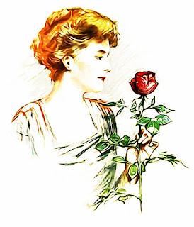 kata bijak mawar berduri