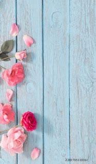 Gambar wallpaper wa bunga keren