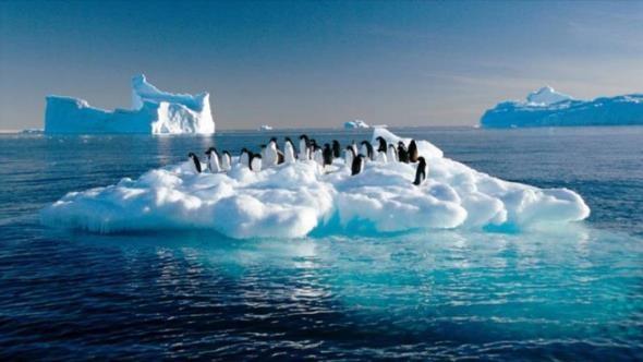 consecuencias del calentamiento global sobre la biodiversidad