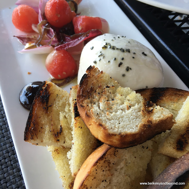 housemade burrata at Bellanico Restaurant & Wine Bar in Oakland, California