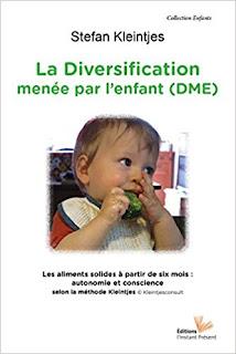 La Diversification Menée Par L'enfant de Stefan Kleintjes PDF