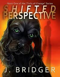 Shifted Perspective by J. Bridger book cover