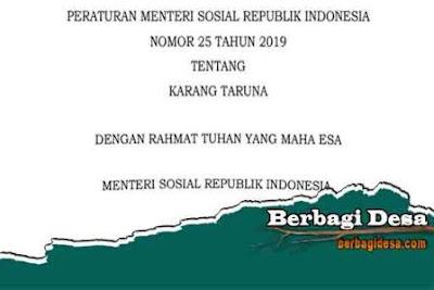 Download Peraturan Menteri Sosial Nomor 25 Tahun 2019 Tentang Karang Taruna