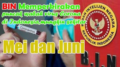 BIN Memperkirakan puncak wabah virus Corona di Indonesia mungkin sekitar Mei dan Juni.