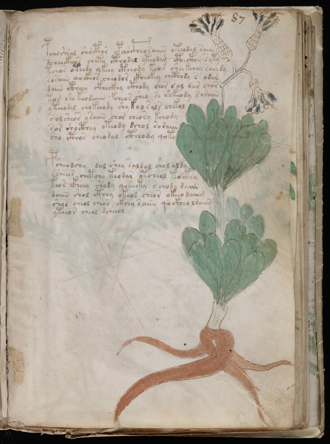 manuscrito157