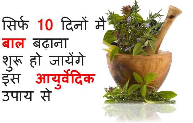 Best Ayurvedic Herbs for Hair Growth