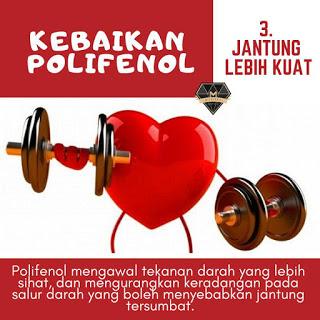 polifenol untuk kesihatan jantung