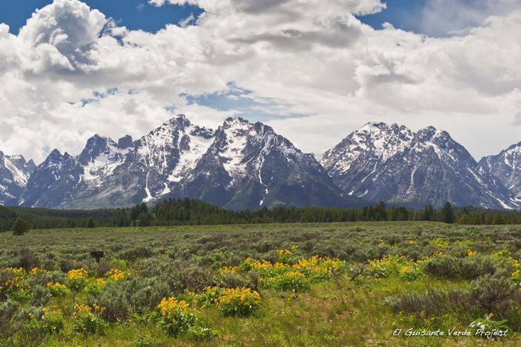 Teton Range - Gran Teton National Park por El Guisante Verde Project
