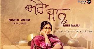 मेरे जानू Mere Jaanu Lyrics in Hindi - Nisha Bano