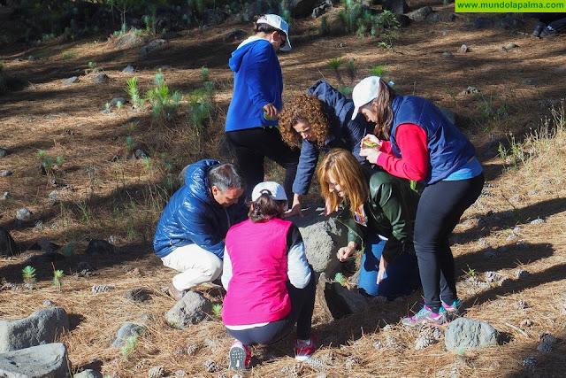 Política Territorial, la Fundación Bancaria 'la Caixa' y la Fundación CajaCanarias fomentan la protección del entorno  forestal a través de actividades de concienciación con escolares