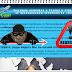 [Мошенники] air-boking.ru - Отзывы, лохотрон   Платформа Air Cash