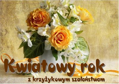 kwiatowy%2Brok - Kwiatowy rok - poinsecja ipodsumowanie zabawy