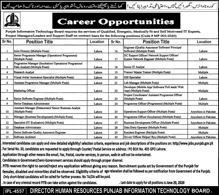 Punjab Information Technology Board Lahore Jobs