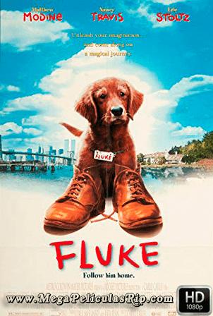Fluke [1080p] [Latino-Ingles] [MEGA]