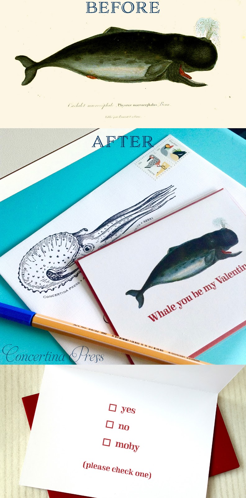 Funny Whale Valentine made from an antique science illustration by Concertina Press