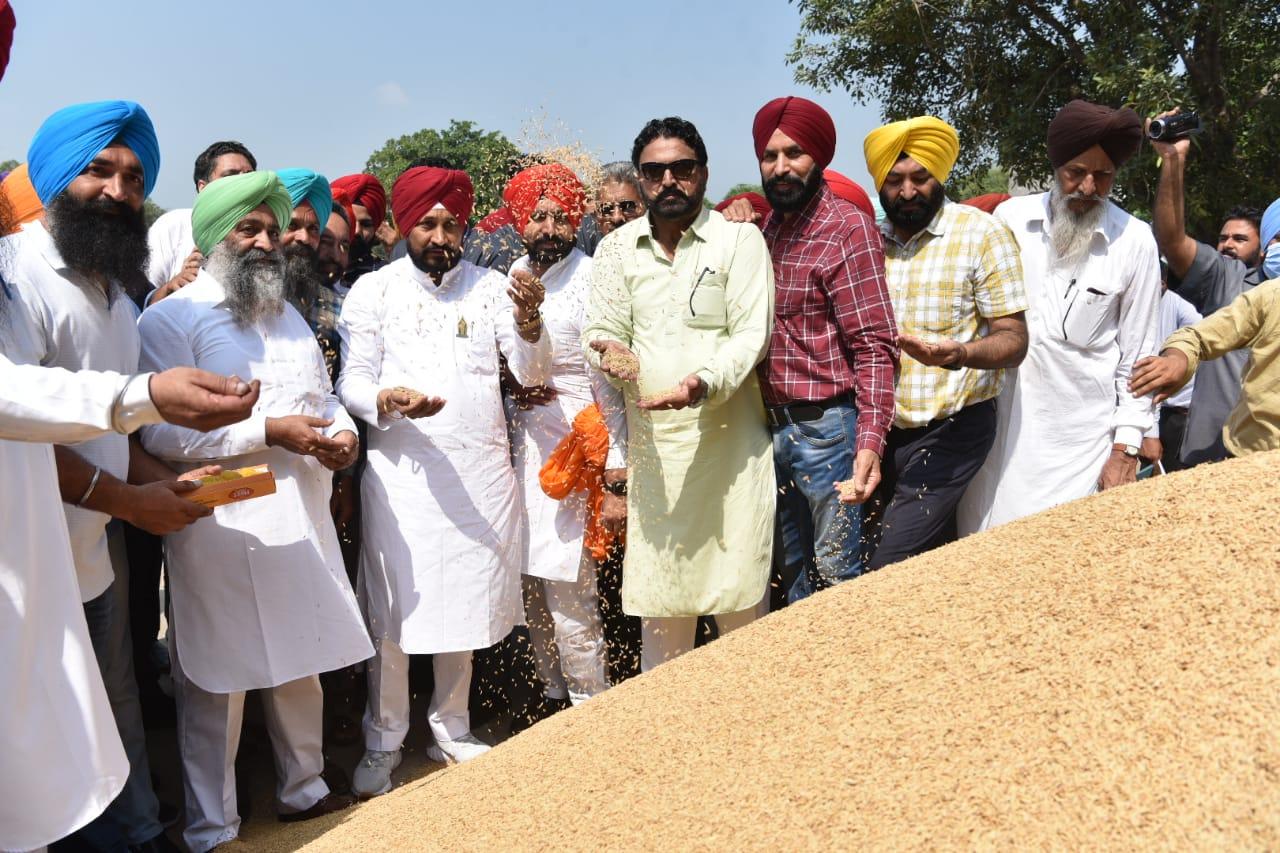 किसानों की धान की फसल का एक-एक दाना अनाज मंडियों में से उठाया जाएगा - चन्नी