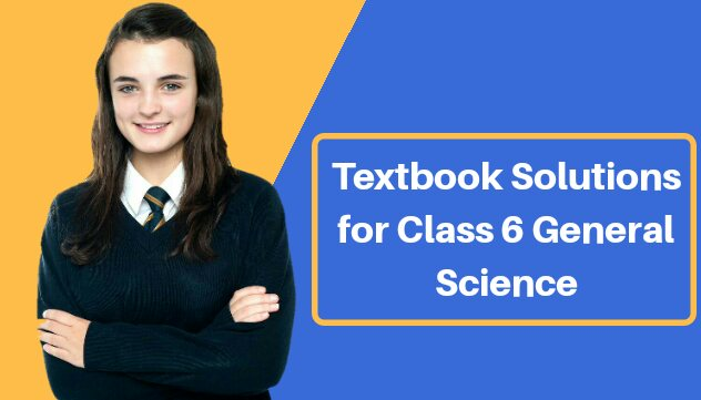 Chapterwise Textbook Solutions for Class 6 General Science