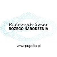 http://www.papelia.pl/stempel-radosnych-swiat-bozego-narodzenia-p-808.html