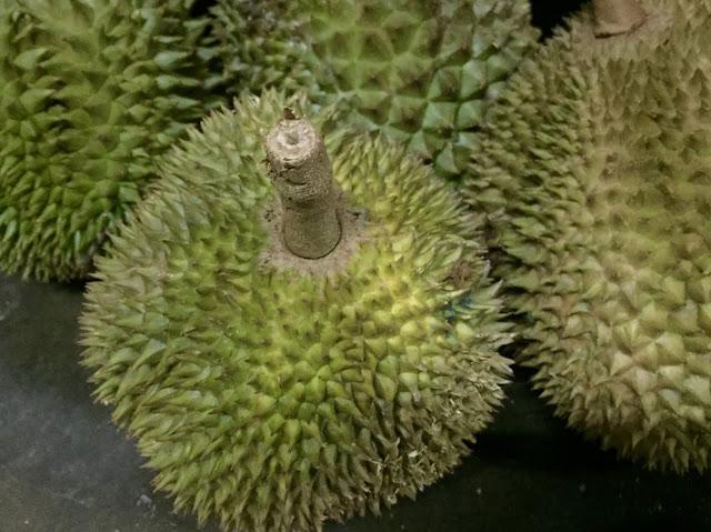 durian, durian mantin