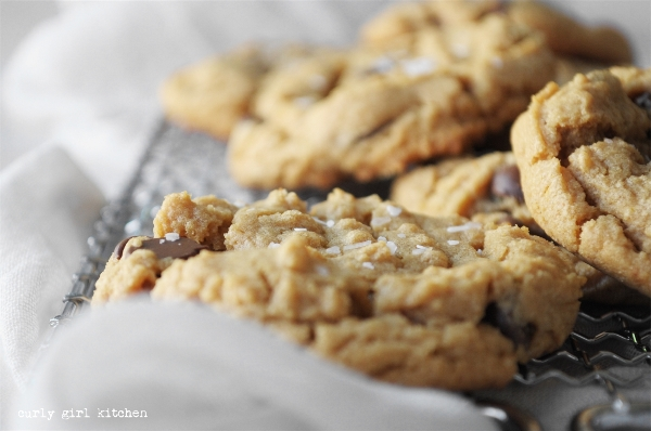 Flourless Peanut Butter Cookies, Peanut Butter Chocolate Chip Cookies, High Altitude Chocolate Chip Cookies, Gluten Free Cookie Recipes, Cookie Photography