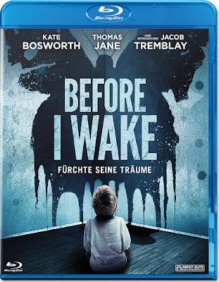 Before I Wake (2016) Dual Audio World4ufree