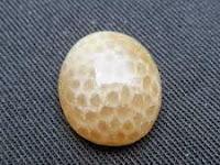 Batu Mustika Ular Antara Bertuah dan Akik