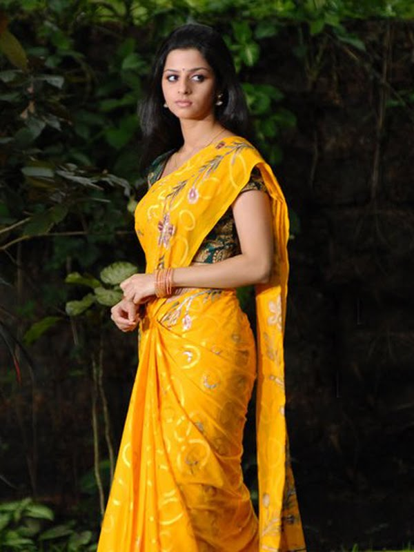 Look How Hot Vedika In Saree Exclusive Collection-Gorgeous Actress Of Tamil Cinema