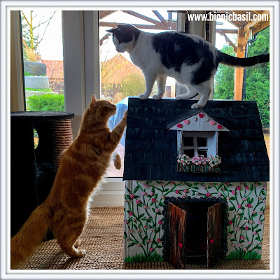 Crafting with Cats Valentine's Special ©BionicBasil® The Valentine's Cottage