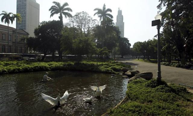 O paisagismo do parque inclui árvores que atraem pássaros que se abrigam em suas imensas copas,  entre elas, figueiras centenárias , grandes palmeiras e baobás. Diversos arbustos e jardins com milhares de espécies de plantas são encontrados por lá.